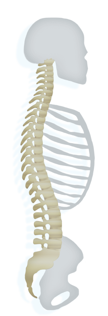 simmons specific chiropractic in midland michigan provides upper cervical care